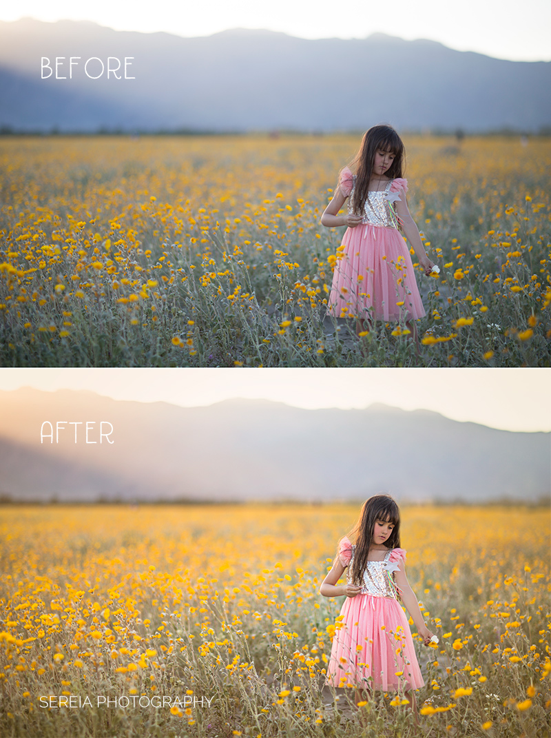 Golden Hour Before and After